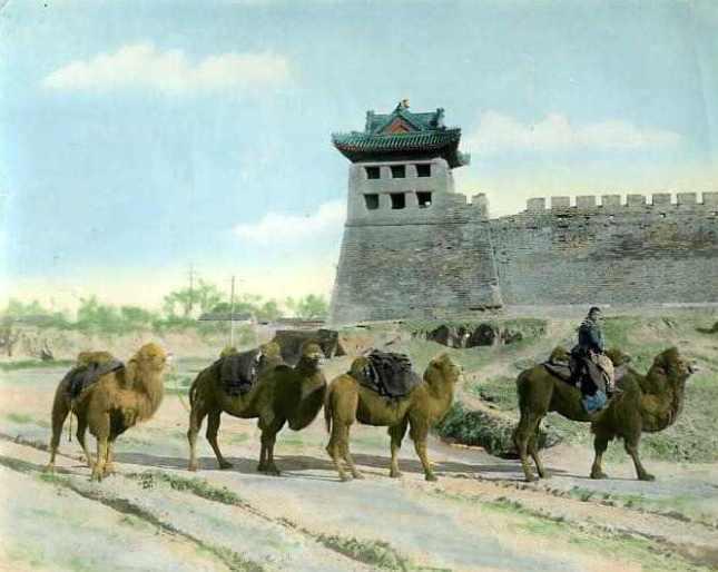 china-cam01s